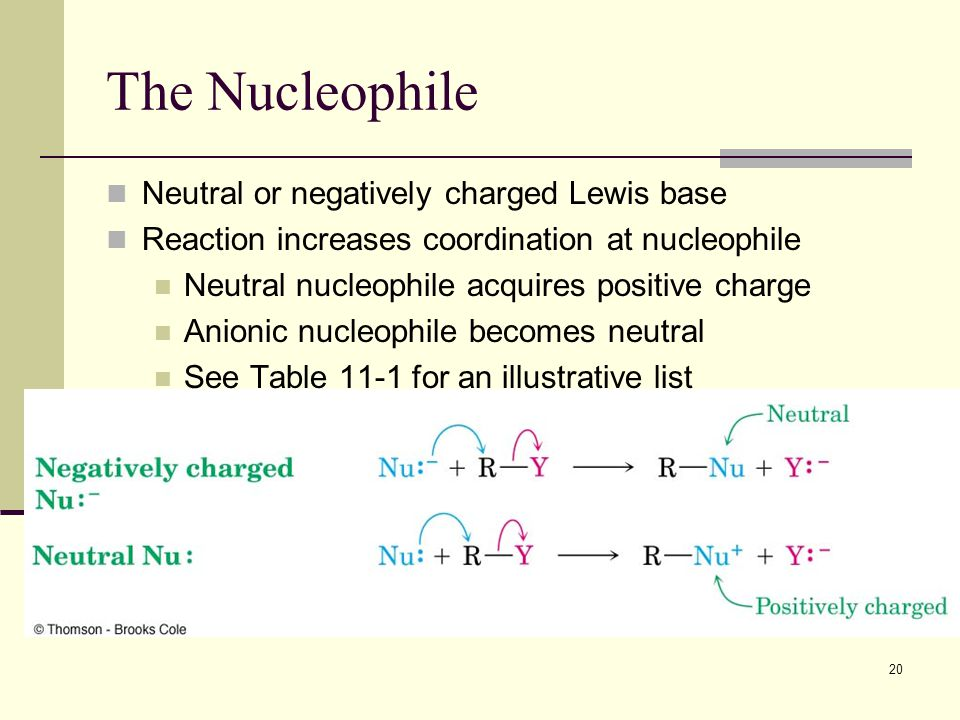 The Nucleophile Neutral or negatively charged Lewis base