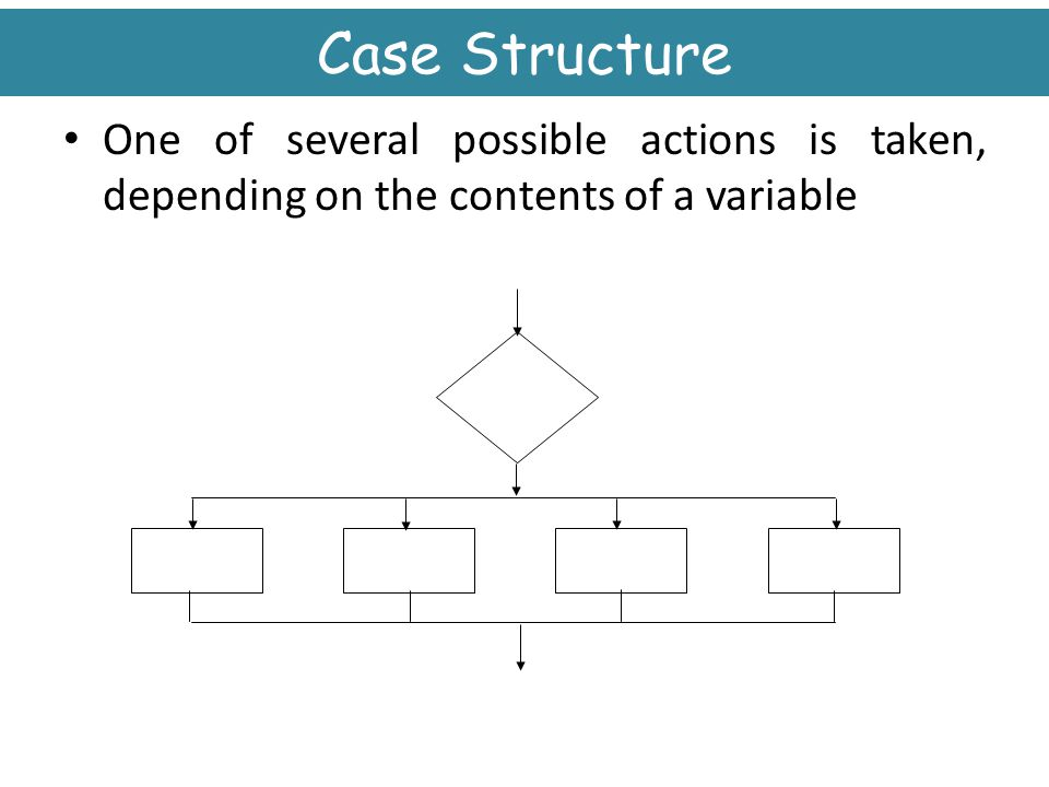 Case Structure One of several possible actions is taken, depending on the contents of a variable