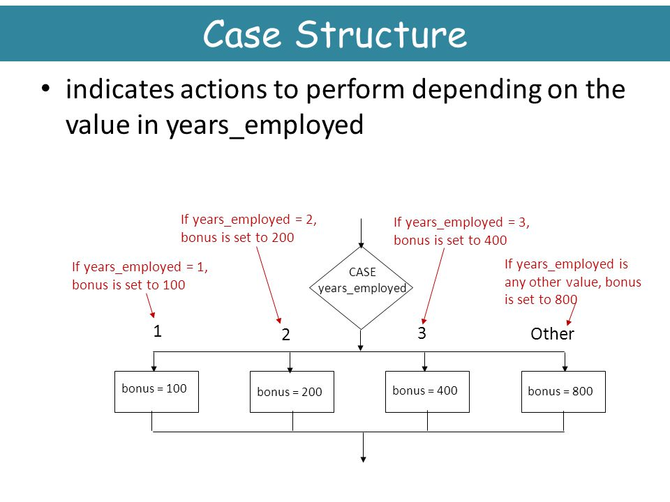 Case Structure indicates actions to perform depending on the value in years_employed. If years_employed = 2, bonus is set to 200.