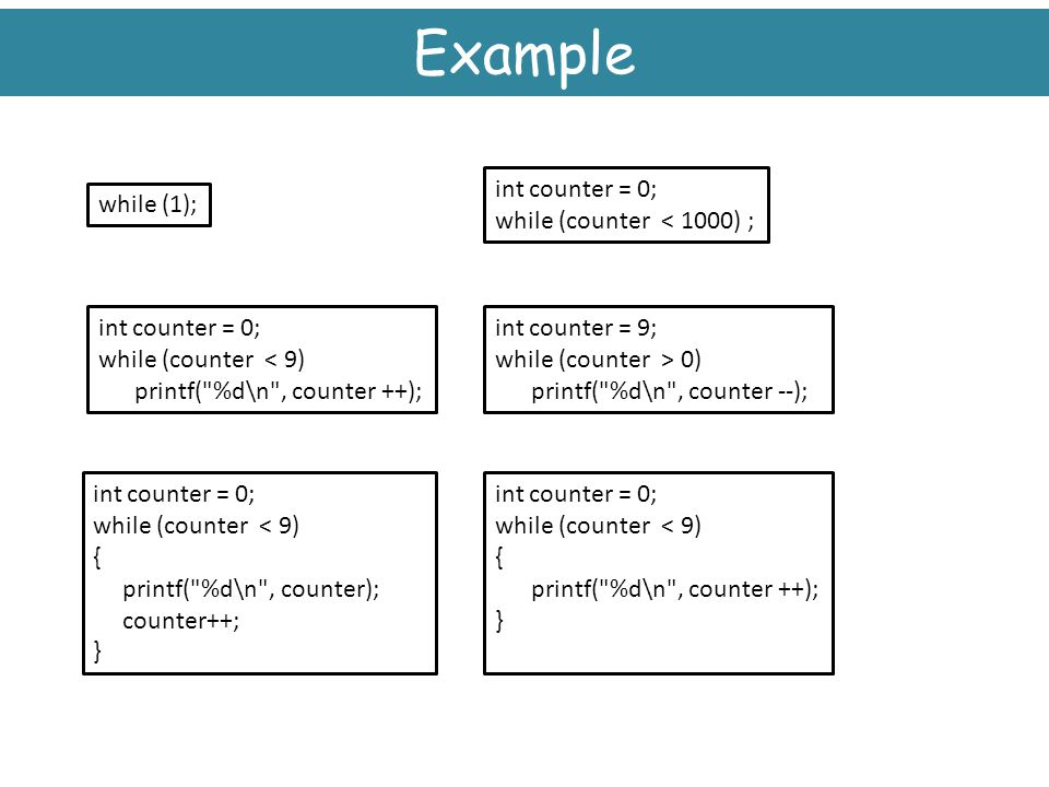 Example int counter = 0; while (counter < 1000) ; while (1);