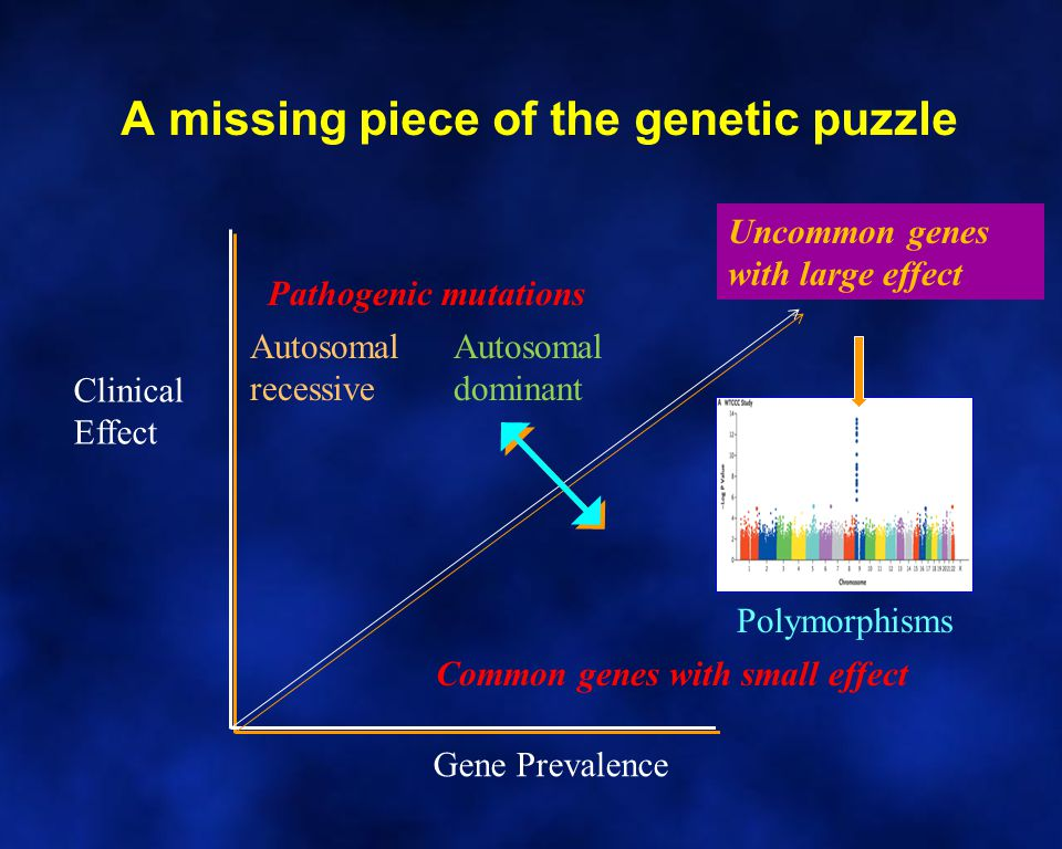 A missing piece of the genetic puzzle