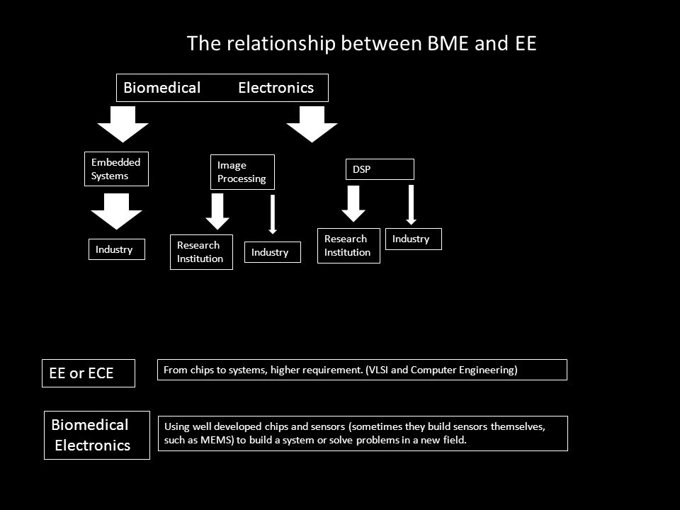 The relationship between BME and EE