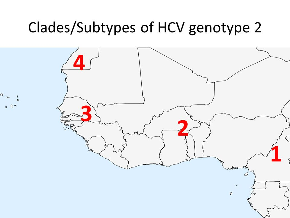Clades/Subtypes of HCV genotype 2