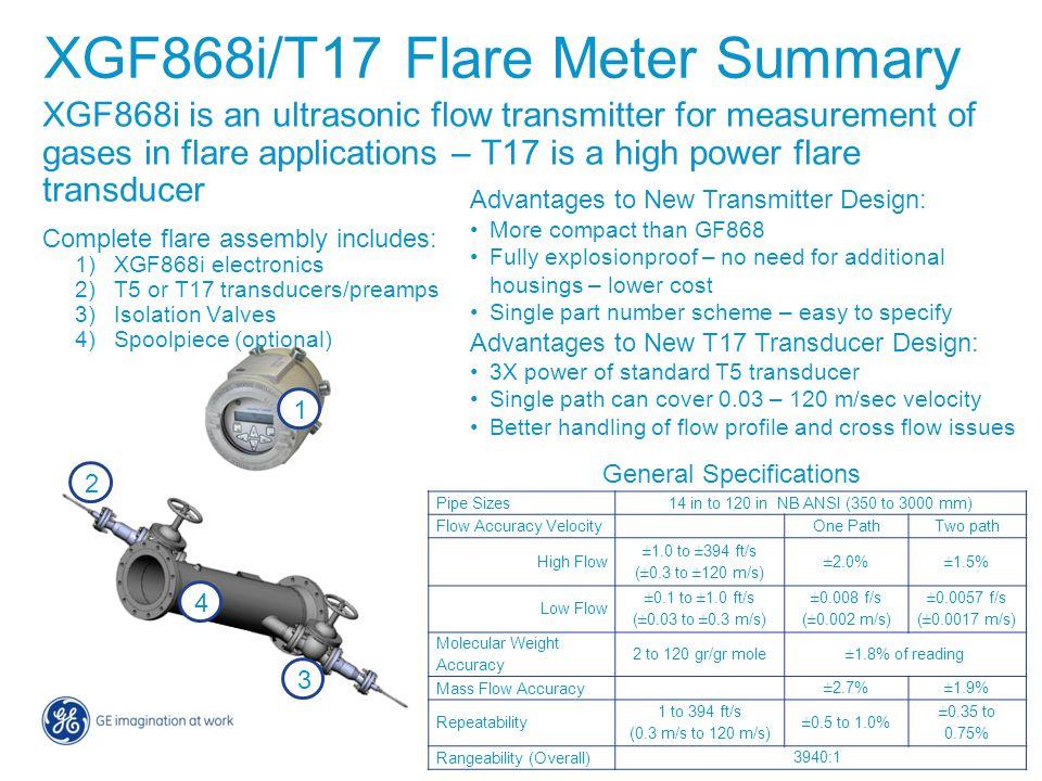 XGF868i/T17 Flare Meter Summary