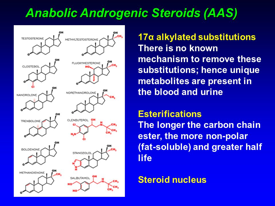 Anabolic Androgenic Steroids (AAS)