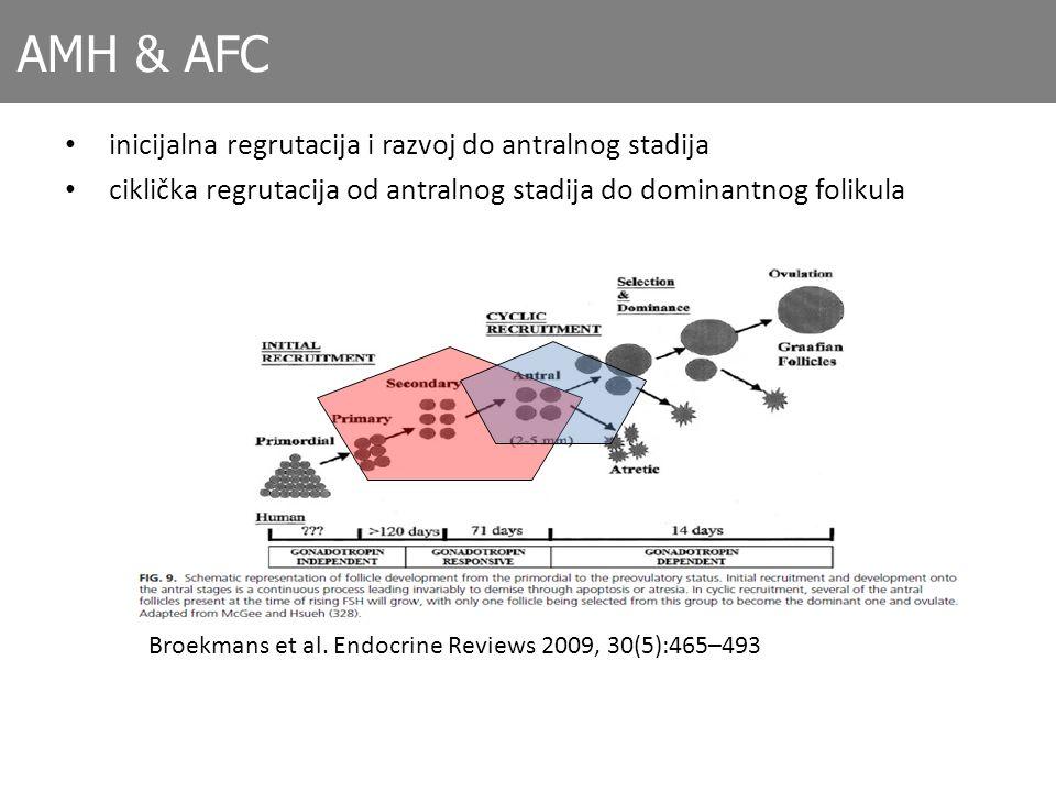AMH & AFC inicijalna regrutacija i razvoj do antralnog stadija