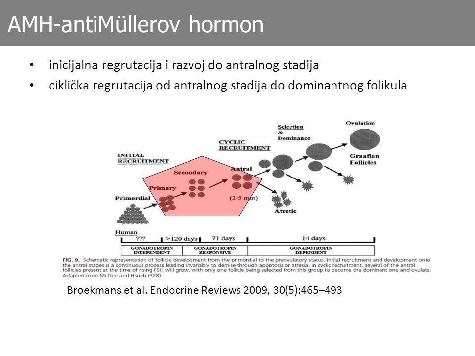 AMH-antiMüllerov hormon