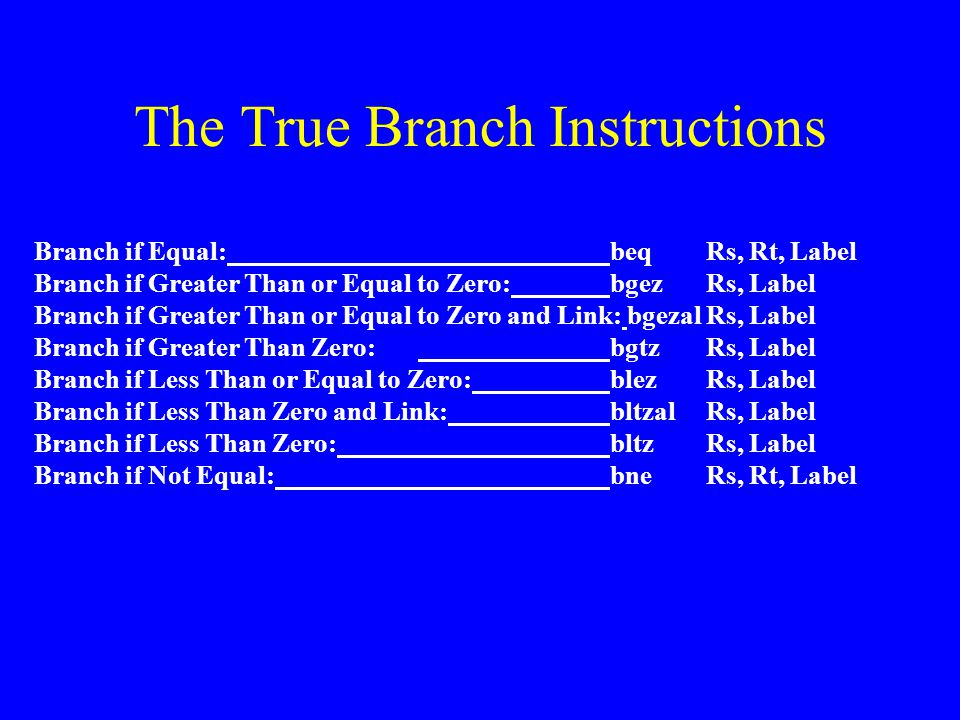The True Branch Instructions