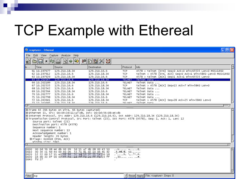 TCP Example with Ethereal