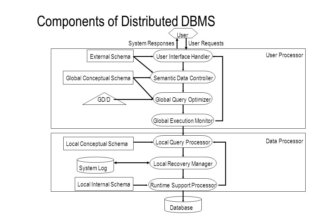Components of Distributed DBMS