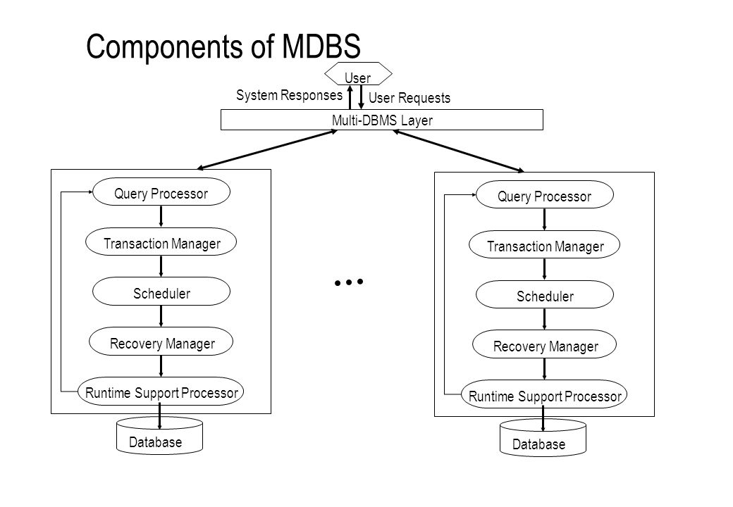 Components of MDBS User System Responses User Requests
