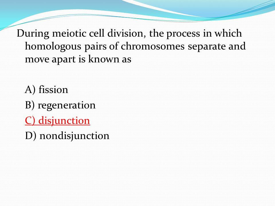 During meiotic cell division, the process in which homologous pairs of chromosomes separate and move apart is known as A) fission B) regeneration C) disjunction D) nondisjunction