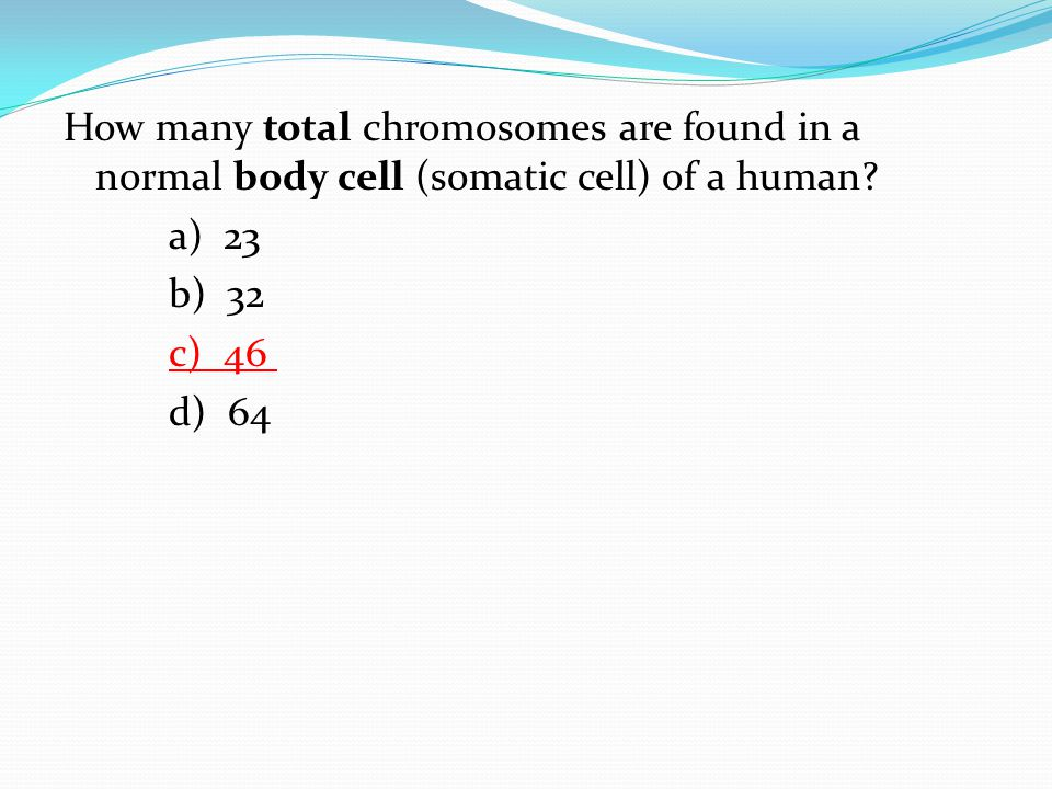 How many total chromosomes are found in a normal body cell (somatic cell) of a human.