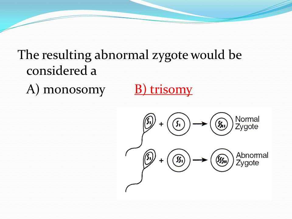 The resulting abnormal zygote would be considered a