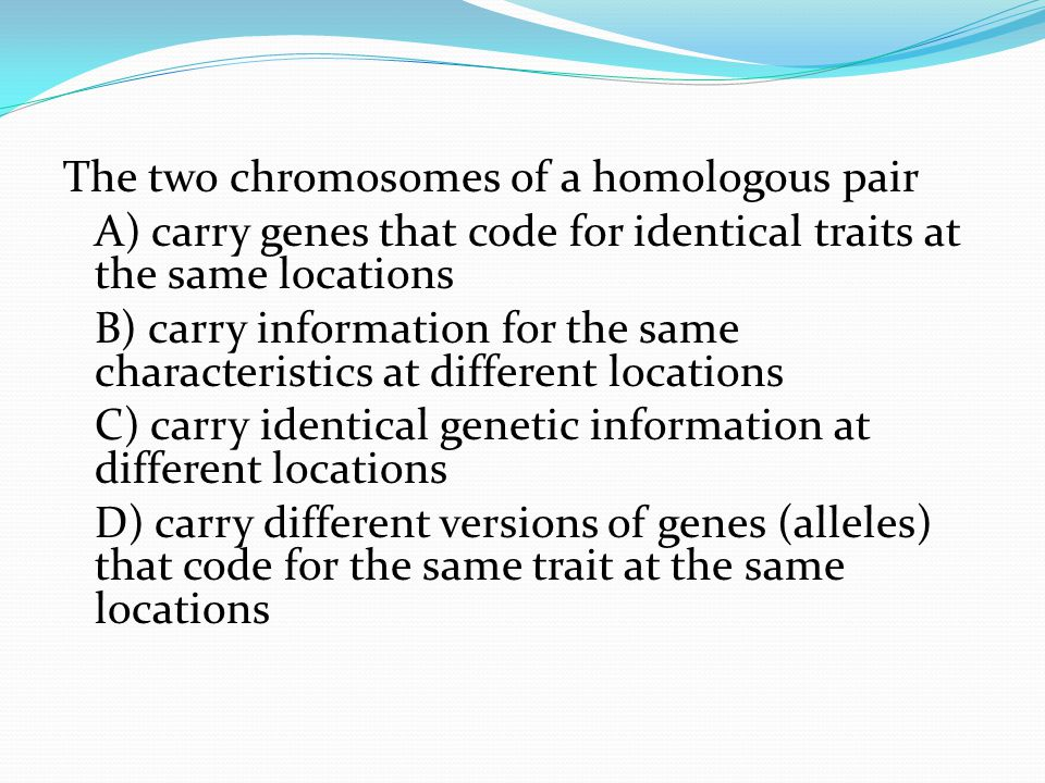The two chromosomes of a homologous pair A) carry genes that code for identical traits at the same locations B) carry information for the same characteristics at different locations C) carry identical genetic information at different locations D) carry different versions of genes (alleles) that code for the same trait at the same locations