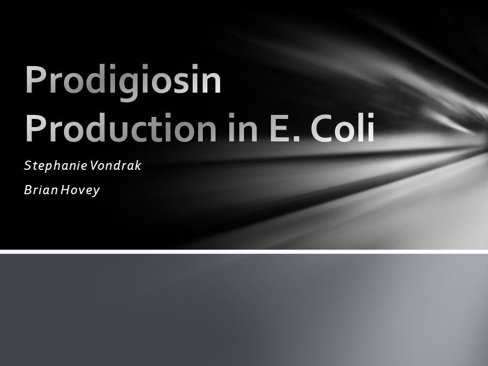Prodigiosin Production in E. Coli