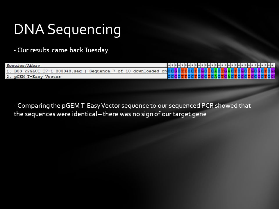 DNA Sequencing - Our results came back Tuesday