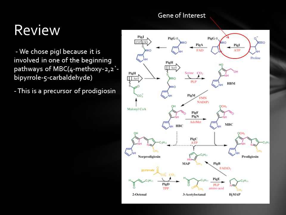 Review Gene of Interest