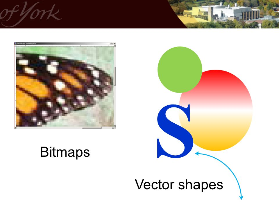 S Bitmaps Vector shapes