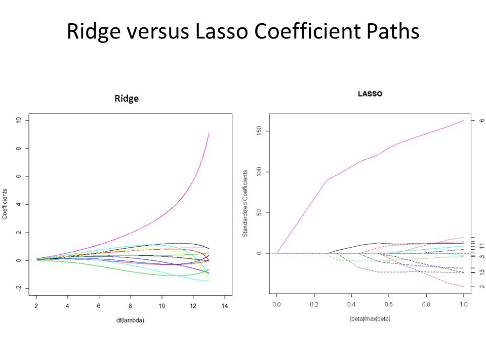 Ridge versus Lasso Coefficient Paths