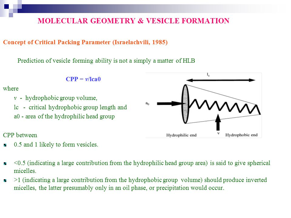 MOLECULAR GEOMETRY & VESICLE FORMATION