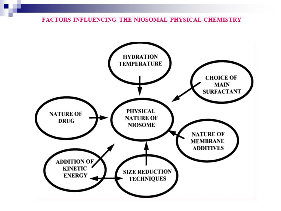 FACTORS INFLUENCING THE NIOSOMAL PHYSICAL CHEMISTRY