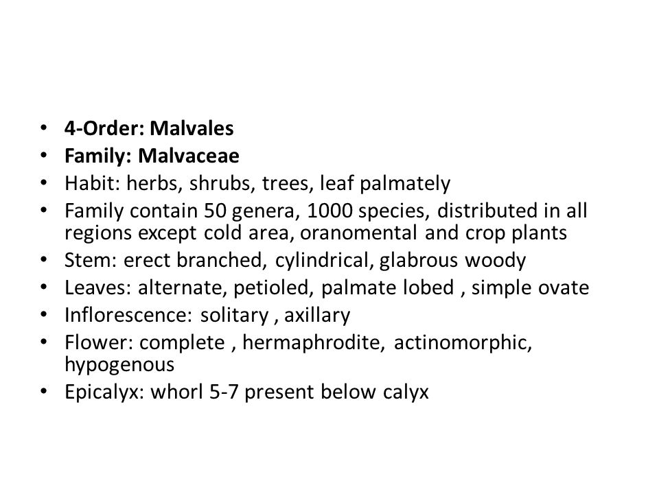 4-Order: Malvales Family: Malvaceae. Habit: herbs, shrubs, trees, leaf palmately.