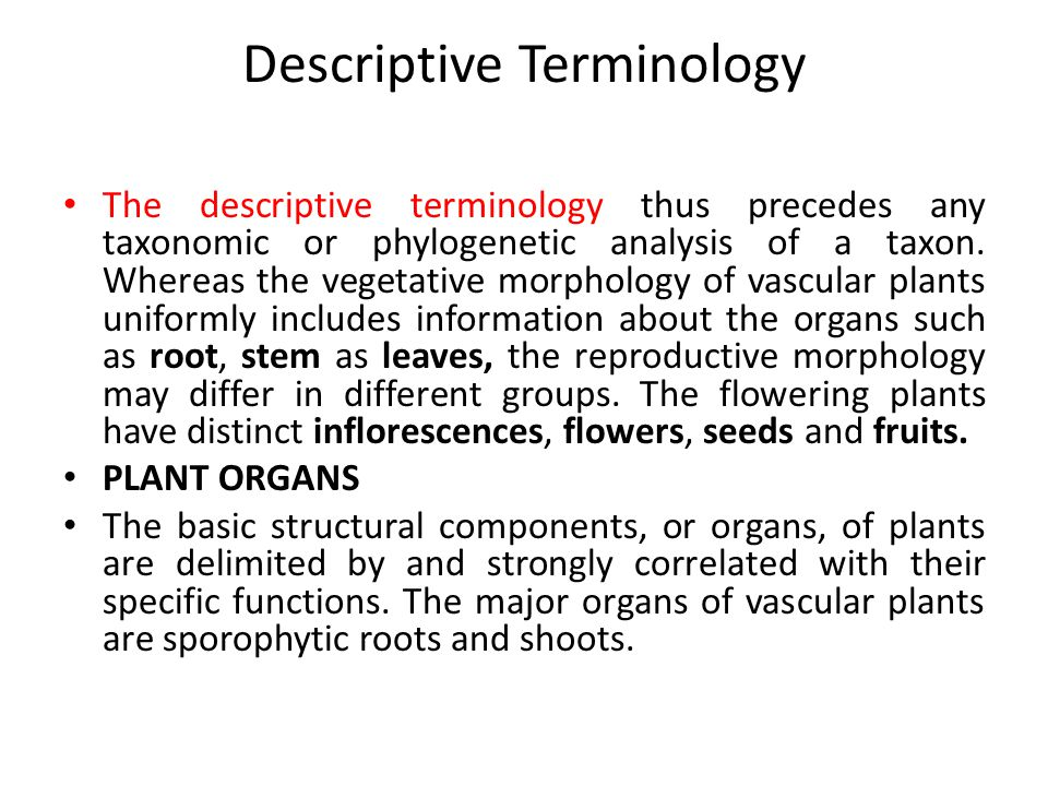Descriptive Terminology