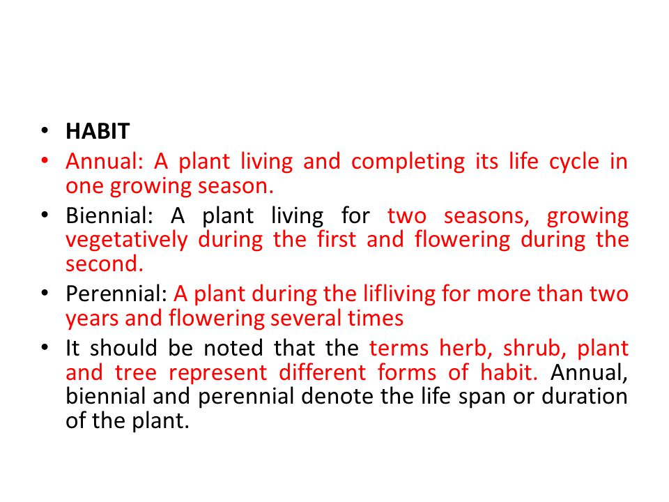 HABIT Annual: A plant living and completing its life cycle in one growing season.