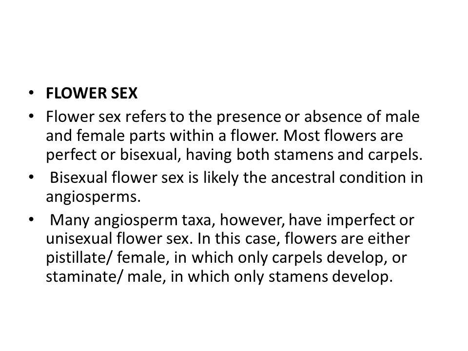 FLOWER SEX