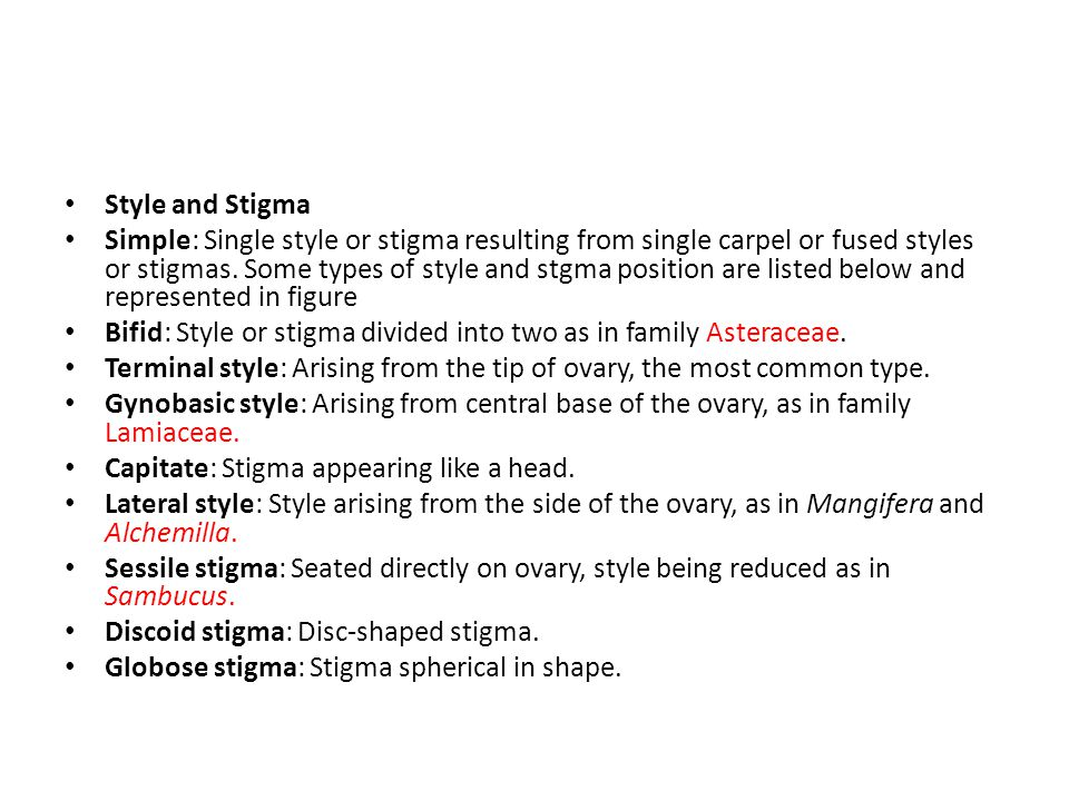 Style and Stigma