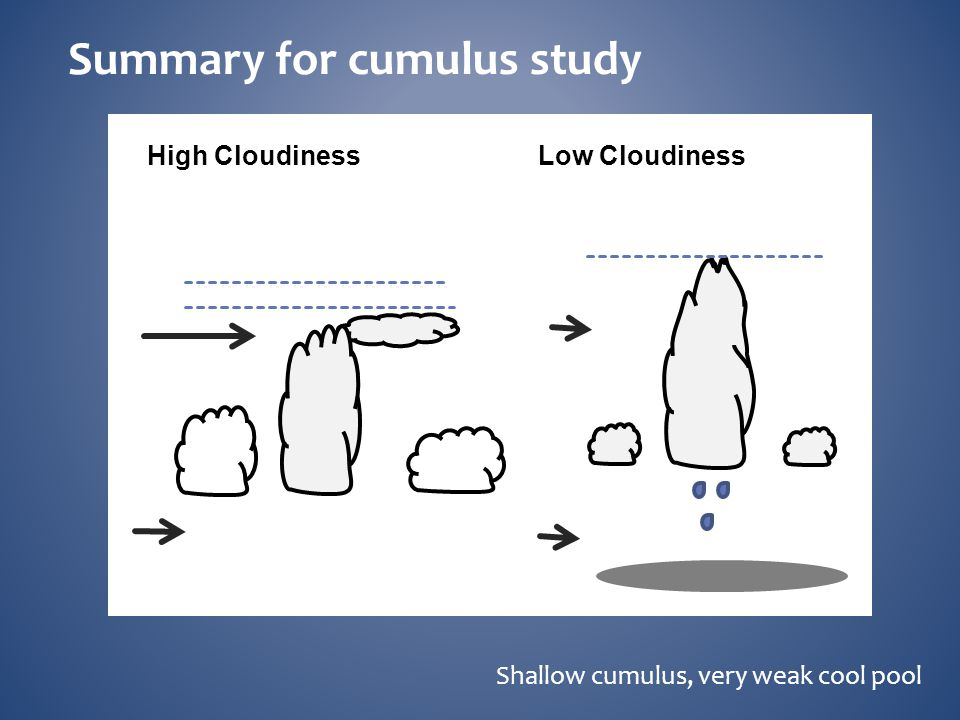 Summary for cumulus study