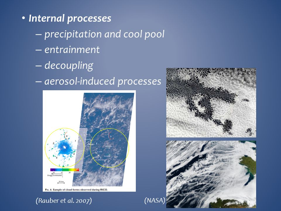 precipitation and cool pool entrainment decoupling