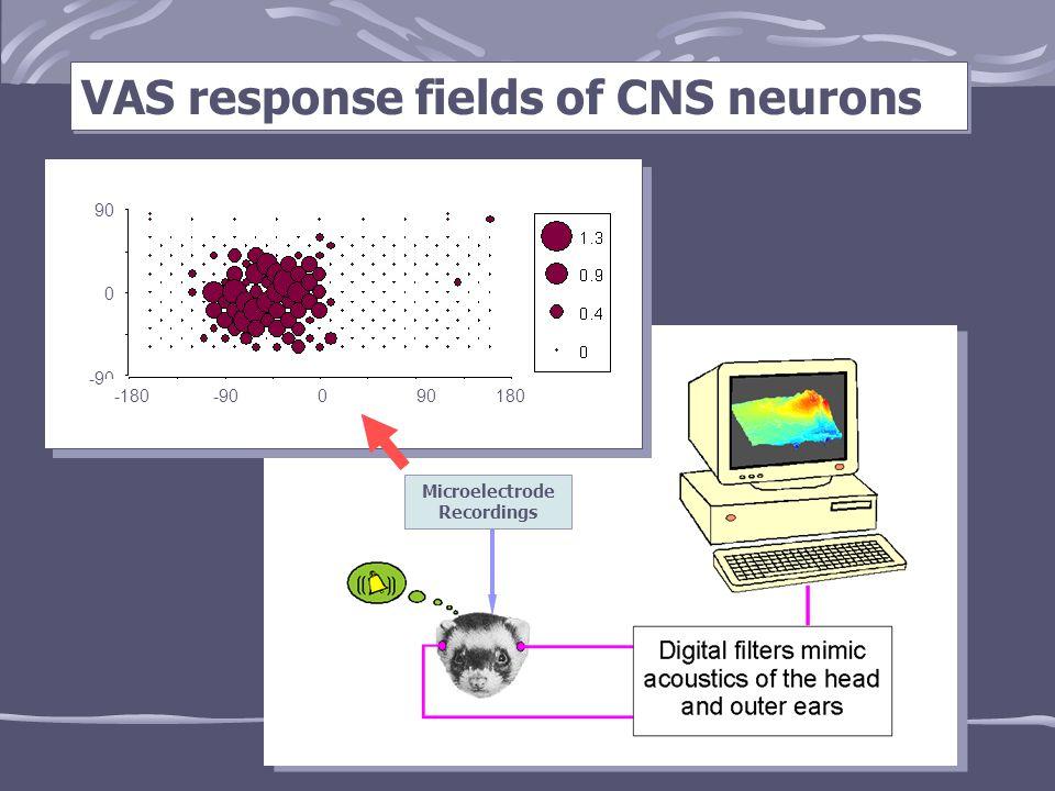 VAS response fields of CNS neurons