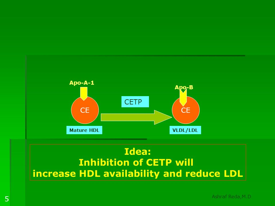 Inhibition of CETP will increase HDL availability and reduce LDL