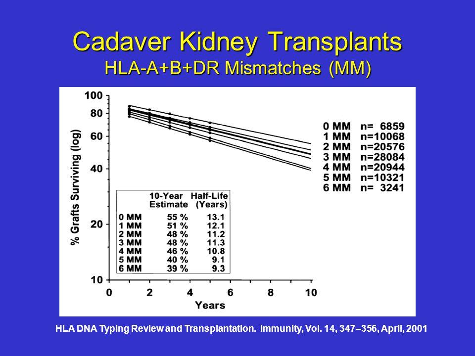 Cadaver Kidney Transplants HLA-A+B+DR Mismatches (MM)