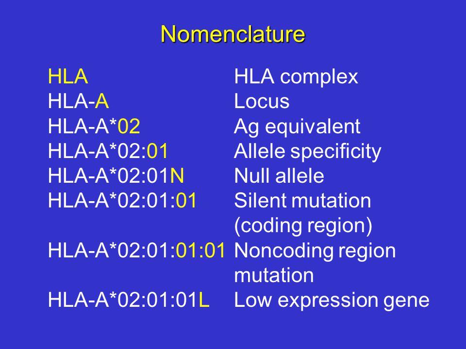 Nomenclature HLA HLA complex HLA-A Locus HLA-A*02 Ag equivalent