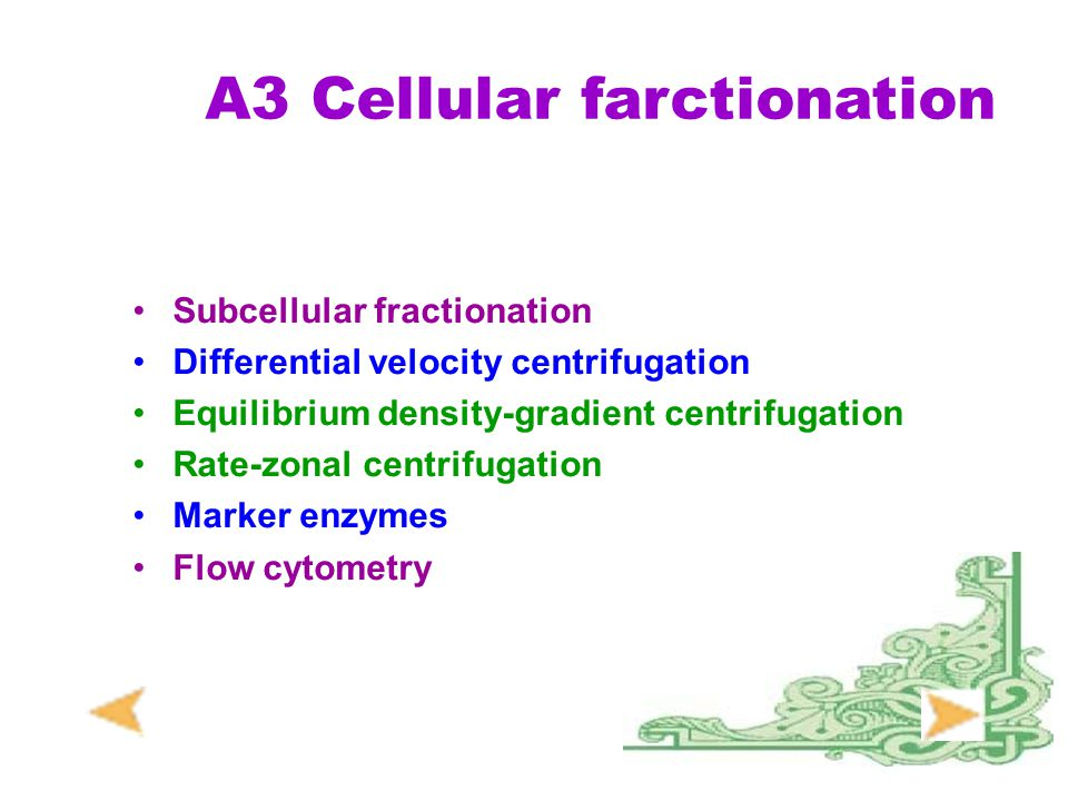 A3 Cellular farctionation