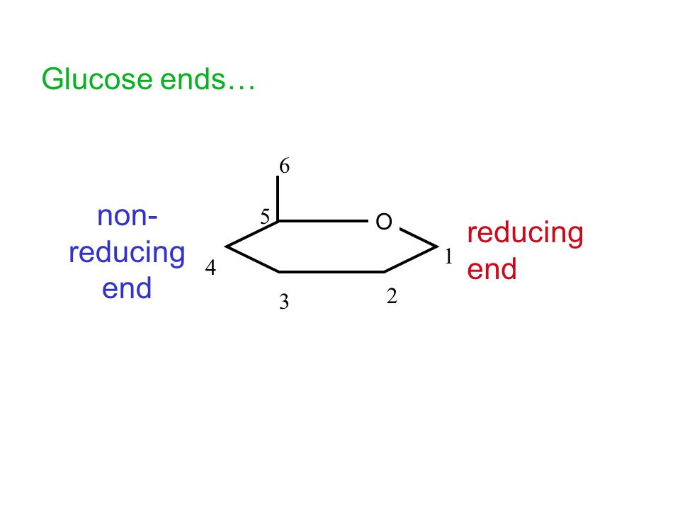 Glucose ends… O 1 2 3 4 5 6 non- reducing end reducing end