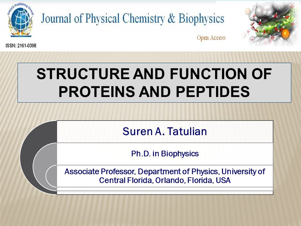 Structure and function of proteins and peptides