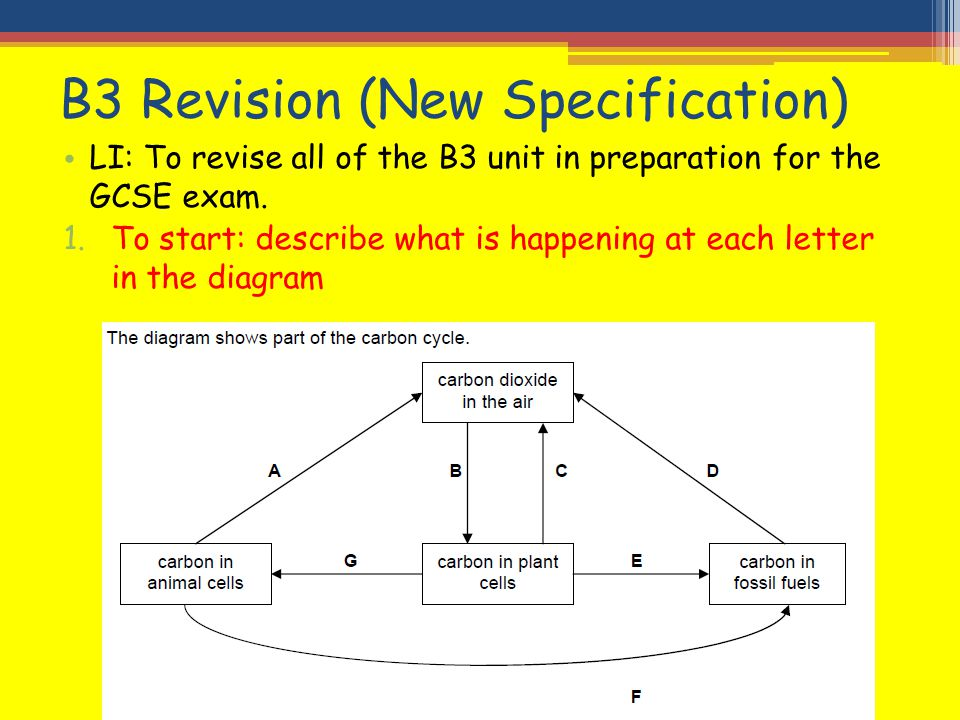 B3 Revision New Specification Ppt Video Online Download