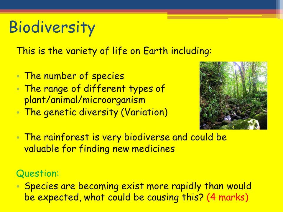 Biodiversity This is the variety of life on Earth including: