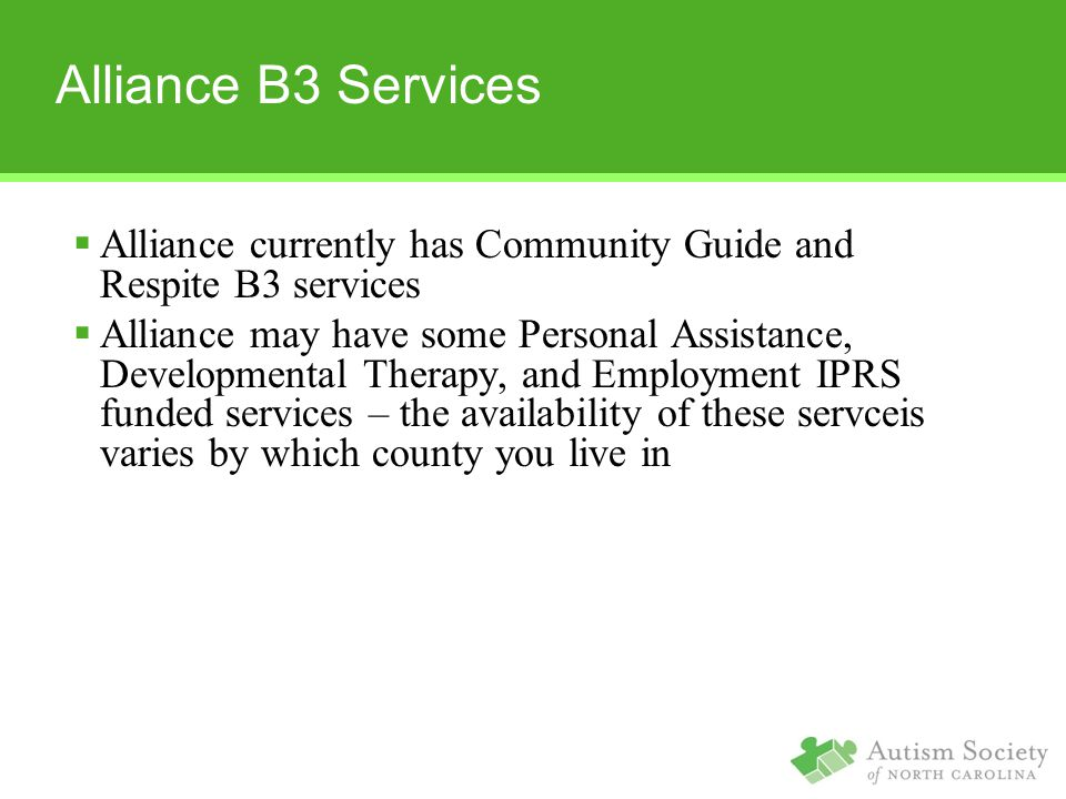 Alliance B3 Services Alliance currently has Community Guide and Respite B3 services.
