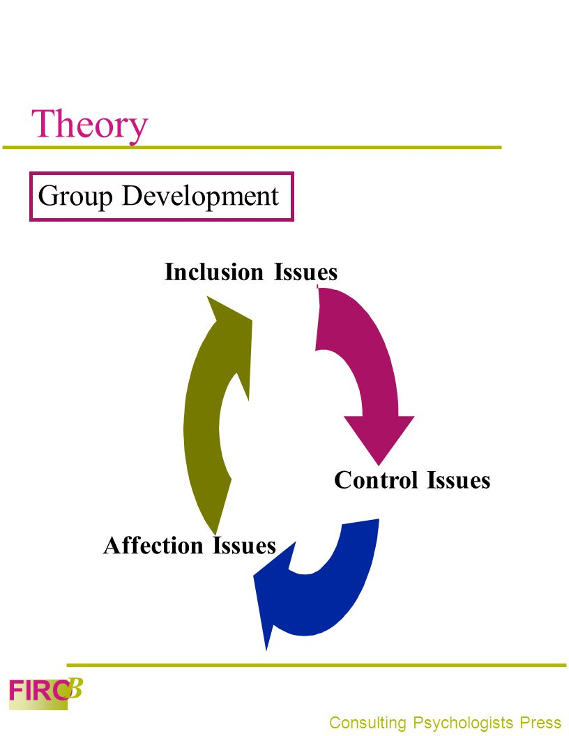 Theory Group Development Inclusion Issues Control Issues