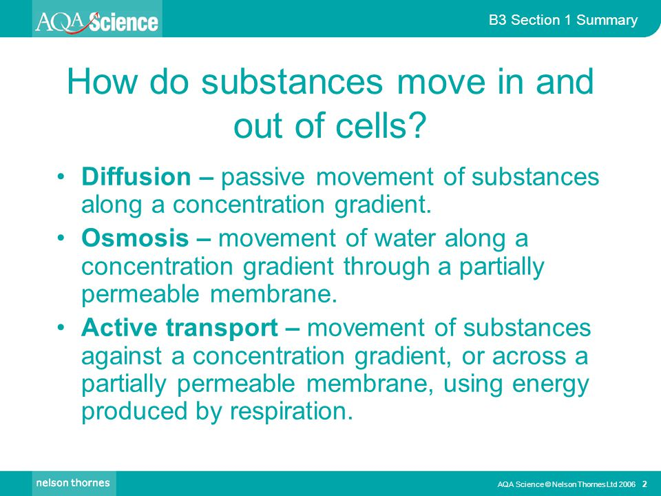 How do substances move in and out of cells