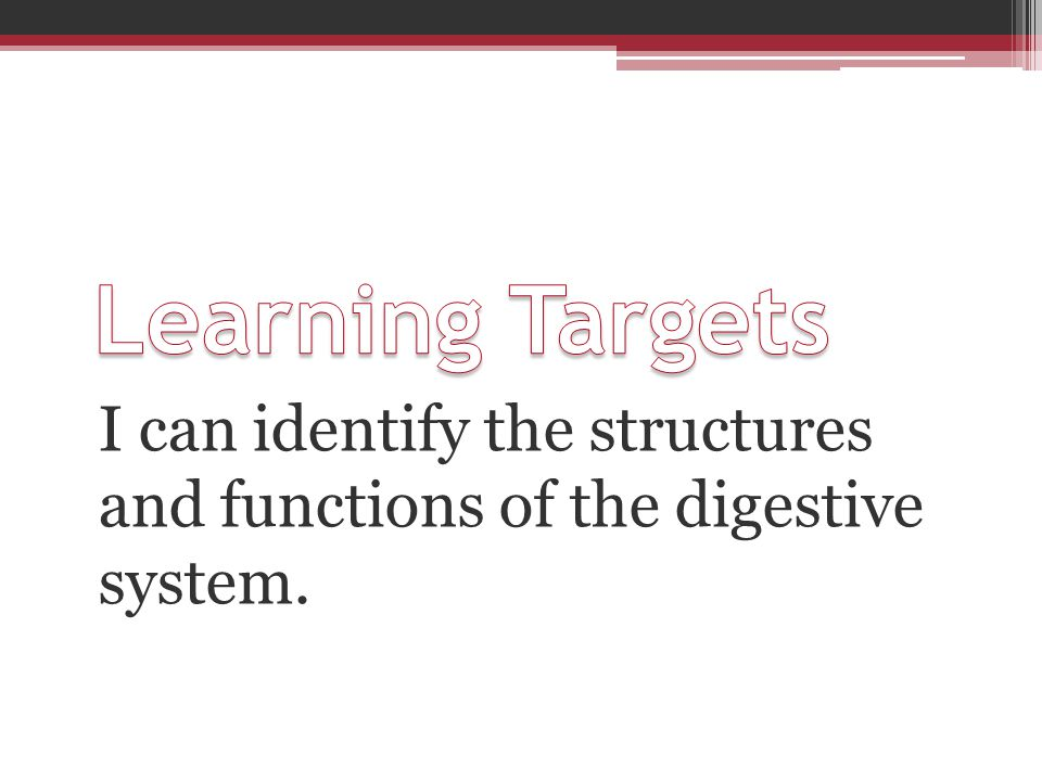 Learning Targets I can identify the structures and functions of the digestive system.