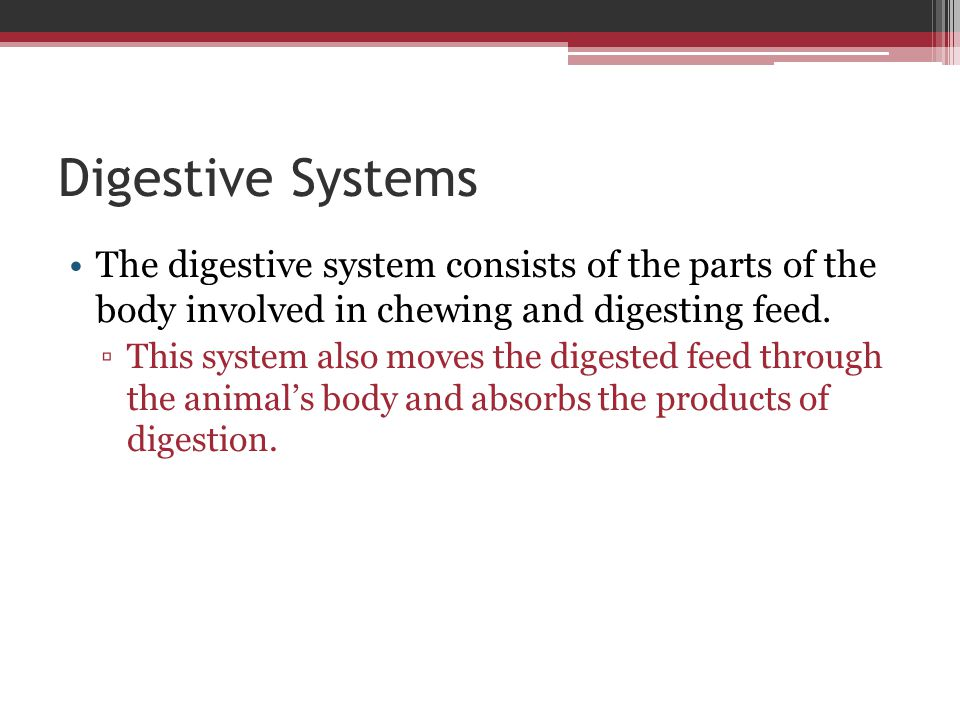 Digestive Systems The digestive system consists of the parts of the body involved in chewing and digesting feed.
