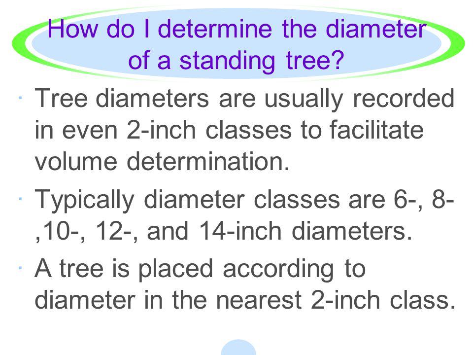How do I determine the diameter of a standing tree