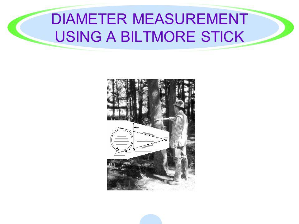 DIAMETER MEASUREMENT USING A BILTMORE STICK