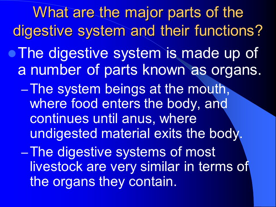 What are the major parts of the digestive system and their functions